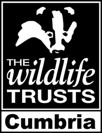 11 cumbria-wildlife-trust-logo-1